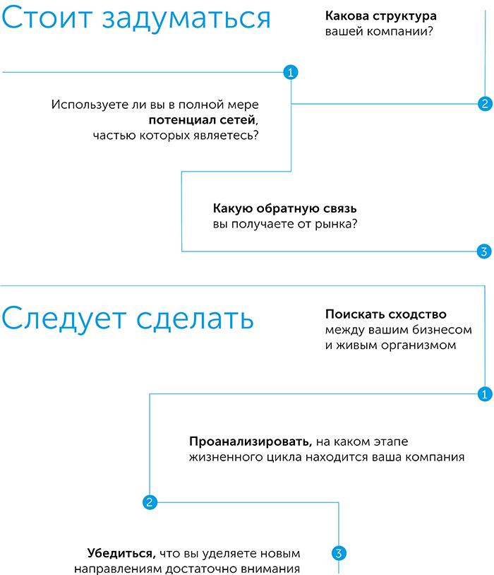 Масштаб, автор Джеффри Вест | Kyivstar Business Hub, изображение №4