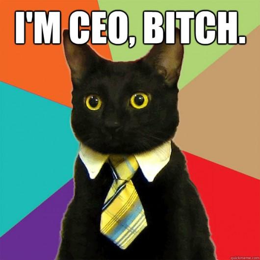 Im-CEO