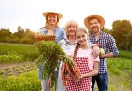 Вести в поля: зачем Киевстар запускает приложение для фермеров