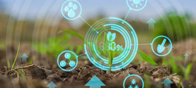 Интернет вещей в сельском хозяйстве: ТОП-8 советов | Kyivstar Business Hub изображение №1